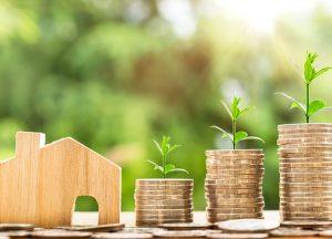 diferencia entre inversion y gasto