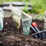 Contabilidad de las subvenciones recibidas
